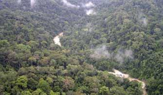 Map 5 Conservation areas and the Leuser Ecosystem Approximately 50% of Sumatran orangutan habitat is inside conservation areas directly managed by the Ministry of Forestry, and 78% lies within the