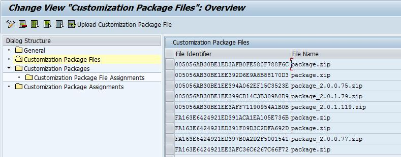 IMG Configuration (6) Maintenance of customization packages and their assignment to profiles
