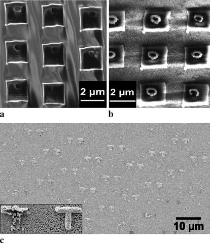 3 Site-selective silver coating on 3D polymer nano-/micro-structures A schematic diagram of the fabrication process for metal/polymer 3D microstructures is shown in Fig. 3. A femtosecond Ti:sapphire laser with an emission wavelength of 796 nm, an output power of 1.