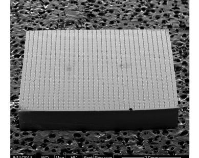 Test Vehicles Die (5x5 mm) Substrate (15.4x15.