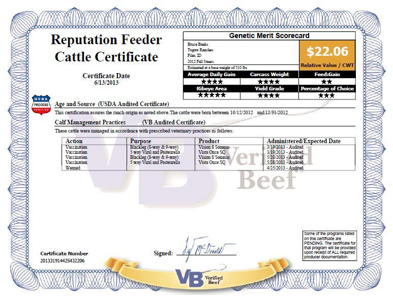 Tugaw Fall 12 Steer Calves Marketed May 31 st Pre-conditioned