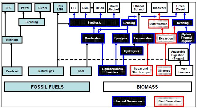 2 Second-generation Bio fuels Second-generation bio fuels are different in feature of being produced from lignocelluloses biomass, enabling the utilization of lower-cost, non-edible feedstock,