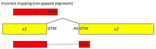 anchor Kim et al, Genome Biology, 2013 Unknown junction inside