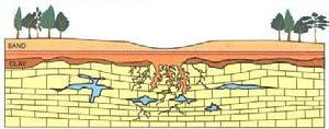 into the expanding cavity. 3. Collapse sinkholes form when surface materials suddenly sink into a subsurface cavity or cave.