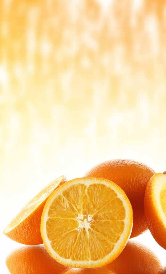 Sundays River Citrus Company is the largest grower, packer and exporter of South African citrus.