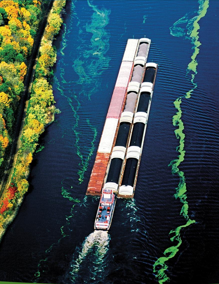 America s Inland Waterways: Anticipating Future Demands Our inland waterways have capacity: to transport today s bulk commodities and
