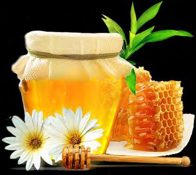 Exports of honey January-October 2014-27.2 thous. t ($70.9 mln.