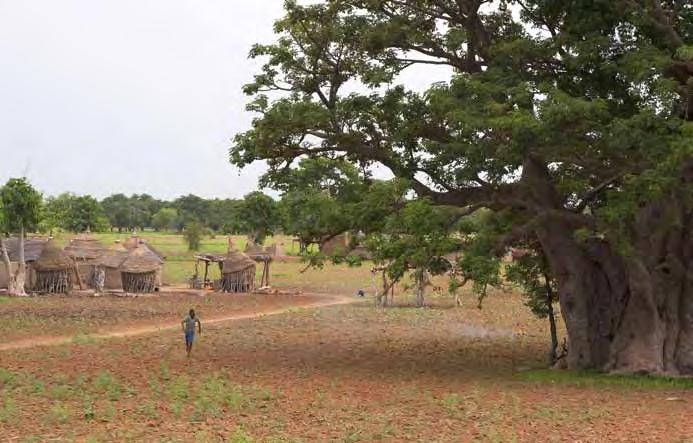 The WASCAL program aims to address the challenge of climate change in West Africa.