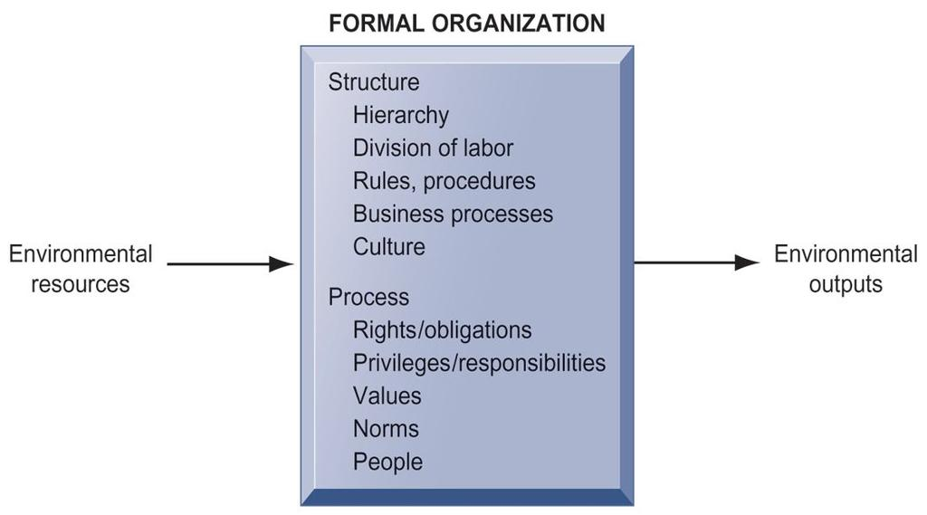 THE BEHAVIORAL VIEW OF ORGANIZATIONS The behavioral view of organizations emphasizes group