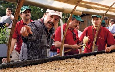 97 500 Tonnes of coffee sourced directly from farmers Coffee Coffee is the second most traded commodity in the world after oil, and grows best within the coffee belt between the tropics of Cancer and