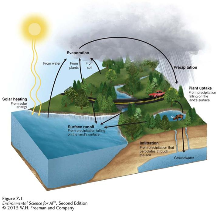 The Hydrologic Cycle The Sun is the engine of the water cycle The hydrologic