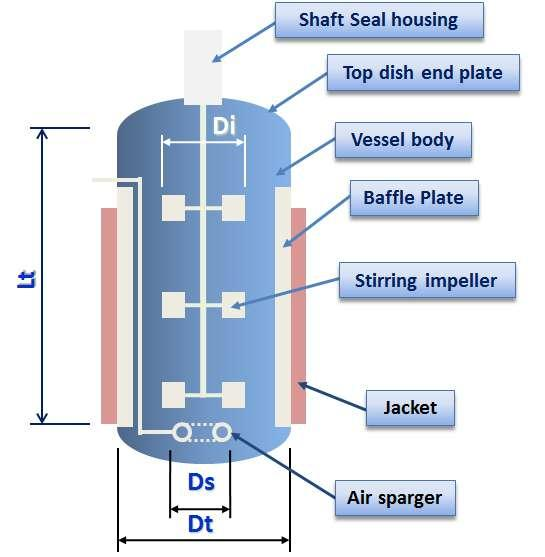 Basic Structure of Fermenter Dt: Tank Diameter Di: Impeller Diameter Ds: Sparger Diameter