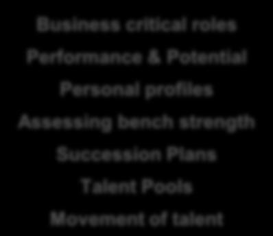 Performance Management Talent Reviews Personal Development Objectives Competencies