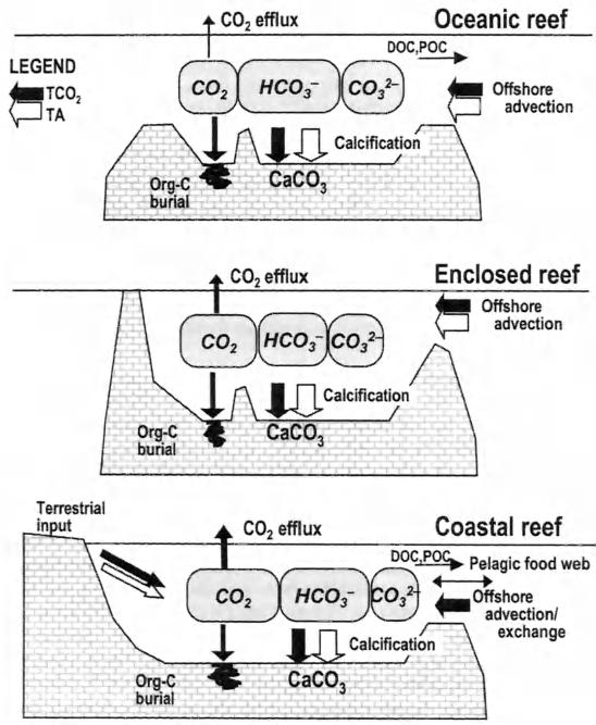 ,,, 100 CORAL REEFS AND SEAWATER CARBONATE CHEMISTRY These observational gaps exist for a good reason.