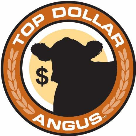 Top Dollar Angus: Premium prices paid for genetically certified, Angus