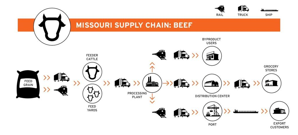 Figure 1-1: Missouri Beef Supply Chain Many products Missourians buy are created and delivered through these complex supply chains and each step uses the freight transportation network to deliver