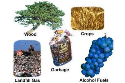 Growing plants remove greenhouse gasses Does not produce much pollution Inexpensive Produces some pollution
