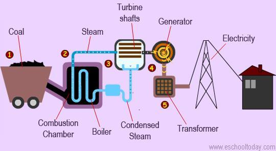 COAL NUCLEAR ENERGY Smaller Large (Uranium) Smaller Describe how it works: Coal is made from dead swamp plants that have undergone extreme heat & pressure underneath layers of sediments.