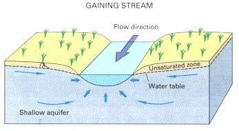 Groundwater Groundwater discharges into: Gaining streams (in humid regions