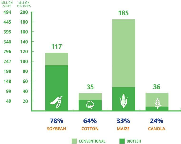 Global Adoption of Biotech Soybean, Maize, Cotton, and Canola The most planted biotech crops in 2016 were soybean, maize, cotton, and canola.