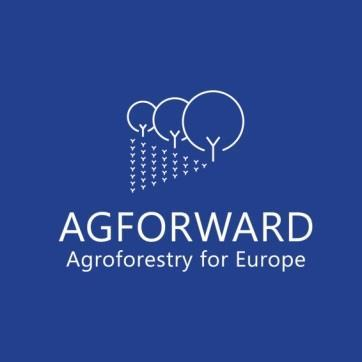 System Report: Olive Agroforestry in Kassandra, Chalkidiki, Greece Project name AGFORWARD (613520) Work-package 3: Agroforestry for High Value Tree Systems Specific group Olives intercropped in