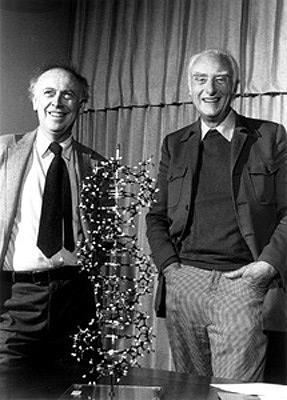 The Components and Structure of DNA The Double Helix Using clues from Franklin s pattern, James Watson
