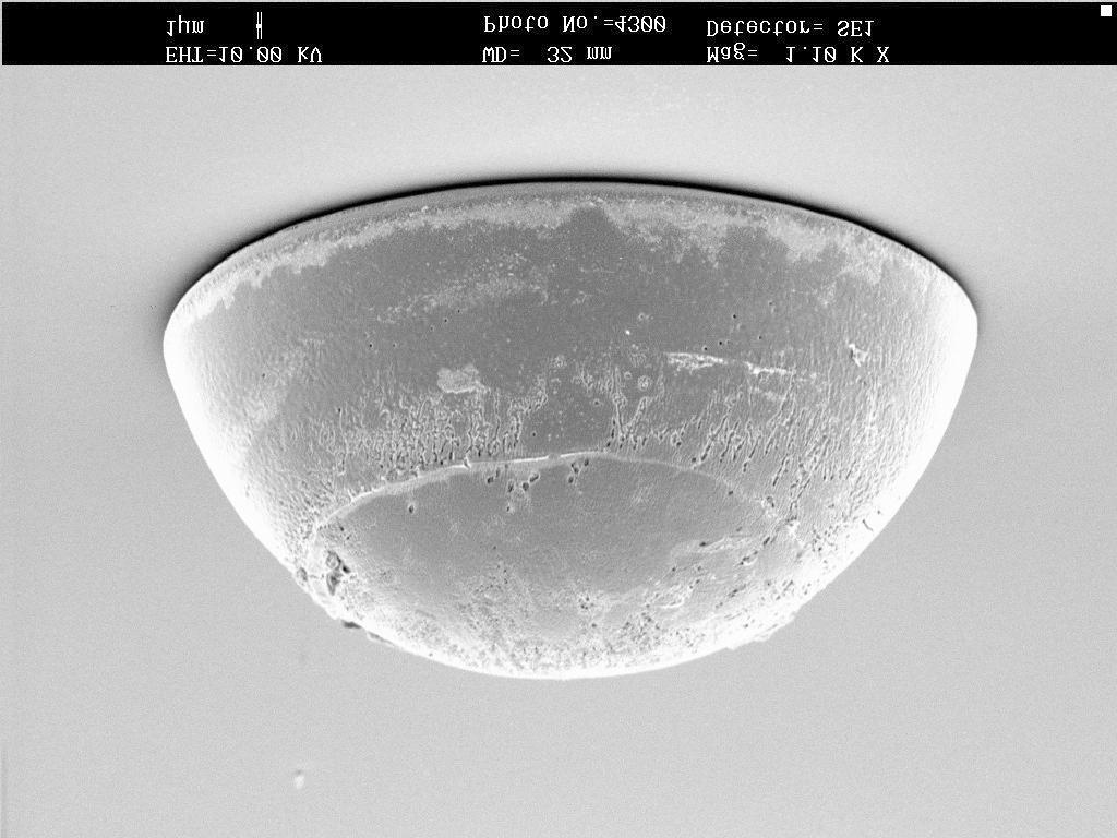 SEM of as-plated tin-silver-copper solder bumps