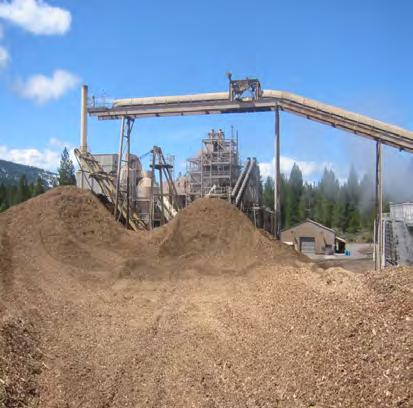 Biomass Power Generation Resource and Infrastructure Requirements Idaho