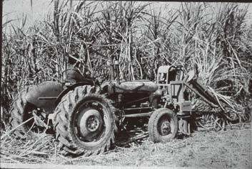tools for harvesting sugarcane crop so as to improve the quality of cutting and output/man/day with reduced energy input.