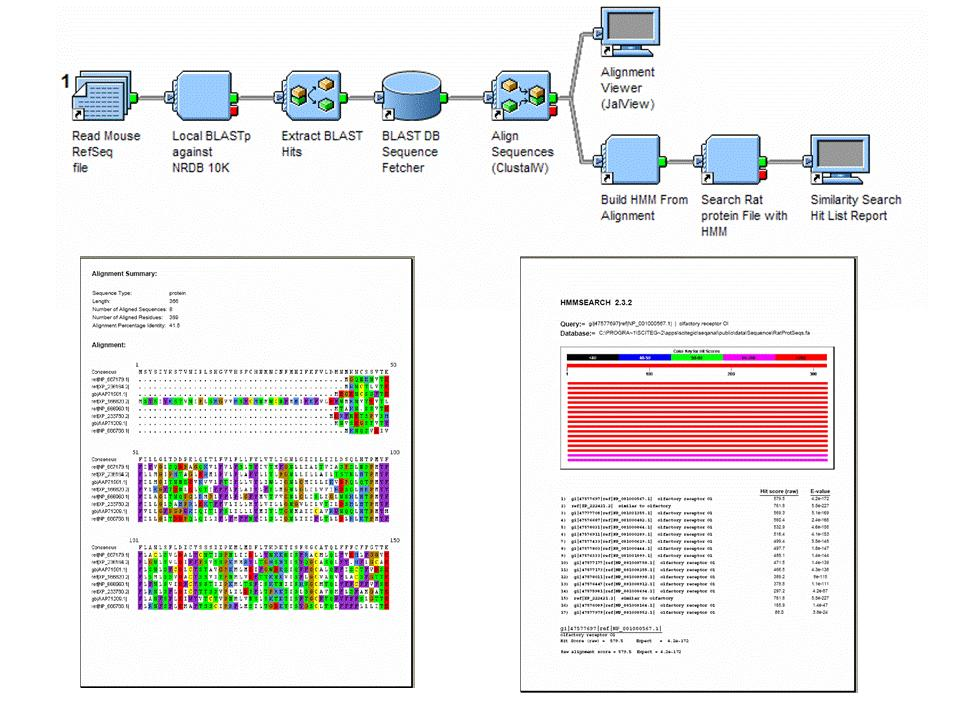 Pipeline Pilot and Bioinformatics Sequence Searching with Profile HMM A common workflow for identifying related proteins based on a sequence profile involves the following: Comparing a protein