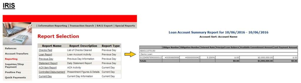 Information Reporting (Accounts) Figure 8: Loan account report in