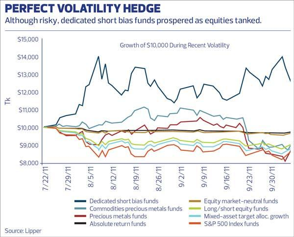 Market Strategy to Deal with Volatility: Borrow