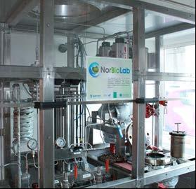 C6 and C6/C5 sugar platform: Ib: Biomass pretreatment and