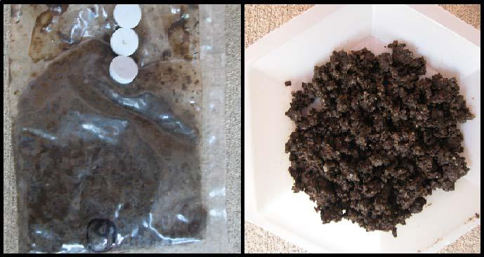 Figure 4-9. Picture of compost plus PLA after 40 days, in and out of the bag 40 30 % biod.