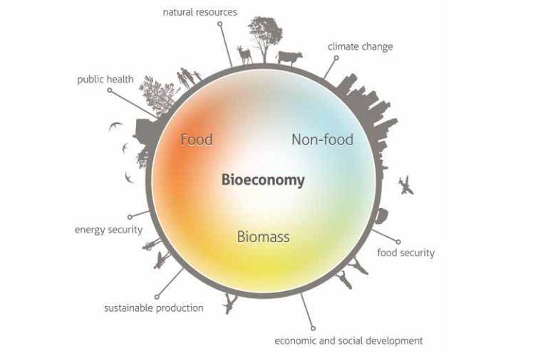 Bioeconomy Natural resources Climate Change Public Health Energy security Food security