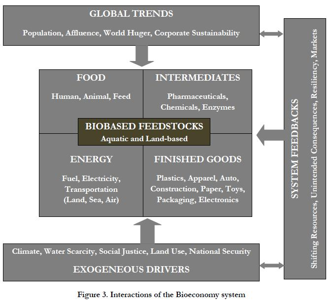 Interactions of the Bio-economy System Source: (Golden &
