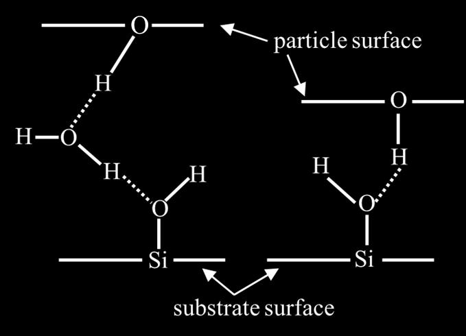 Surface interaction (hydrogen bonding) Hydrogen bonding between Si surface and oxide particle Hydrogen bonding with silica (F H-bond ) Van der Waals force with silica (F vdw ) 600 nn 30 nn Hydrogen