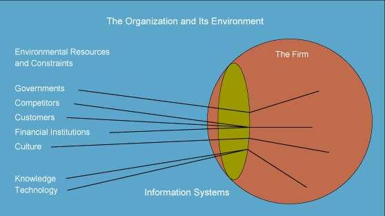 ORGANIZATIONS & INFORMATION SYSTEMS Organization and