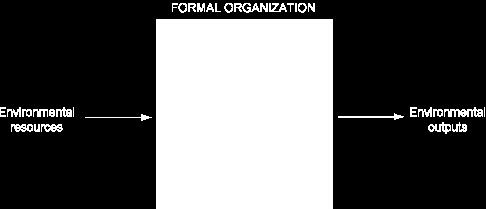 COMMON FEATURES OF ORGANIZATIONS The Behavioral View