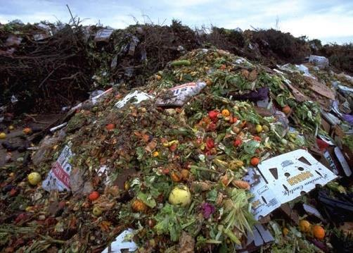 municipal solid waste waste from