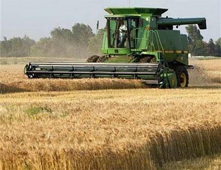 FORAGE SEED BUSINESS IN BRAZIL The forage seed demand come mainly from grass.
