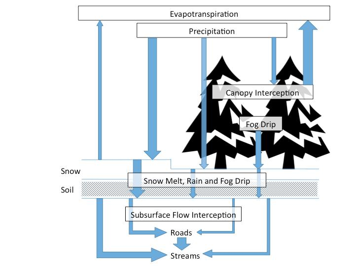 Hydrologic Processes with Snow Source: Perry et al.