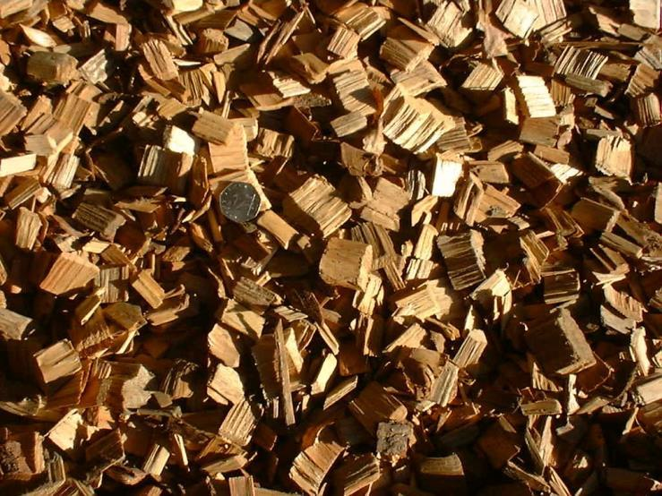 Biomass Combustion Wood Chips Wood pellets