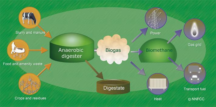 Anaerobic Digestion Methane: CH