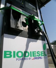 Transesterification Crude Biodiesel Neutralising Acid