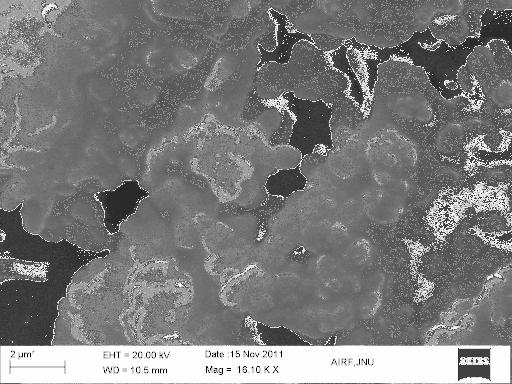 FTIR spectra. Gross morphological changes on cell membranes of bacteria were observed from electron micrographs of exposed cells.