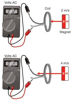 A moving magnet, like the one shown above, produces a voltage difference between the ends of the wires that make the coil.