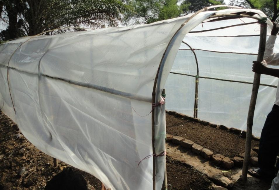 for raising vegetable seedlings in