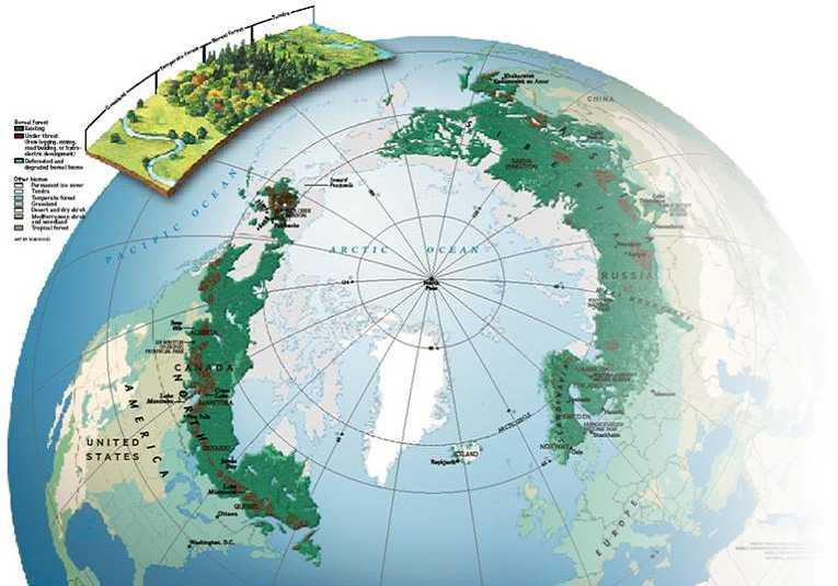 Why is Russia important to Stora Enso?
