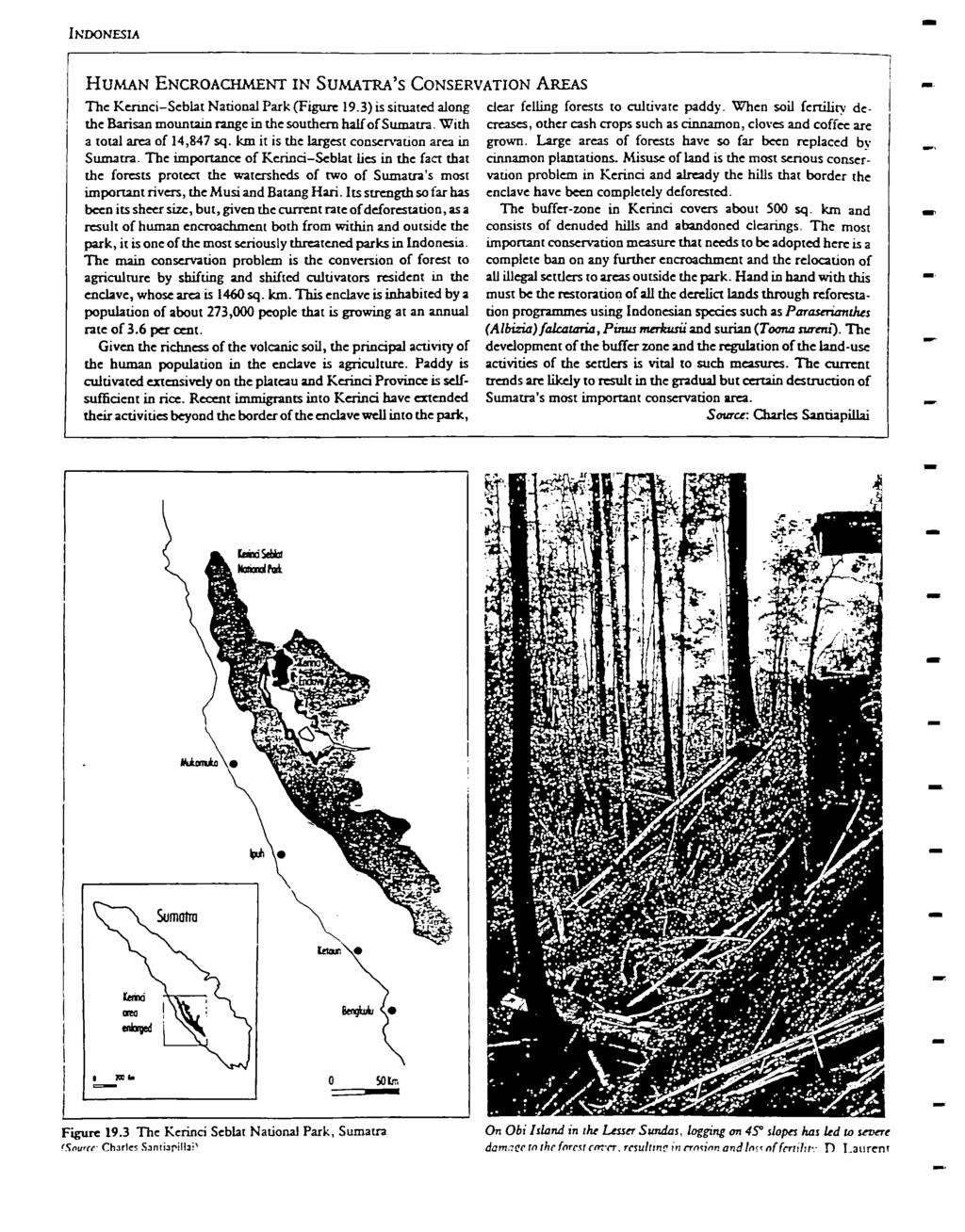 NDONESA HUMAN ENCROACHMENT N SUMATRA'S CONSERVATON.AREAS The KennciSeblat National Pak (Figue 19.3) is situated along the Baisan mountain ange in the southen half of Sumata.